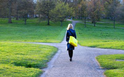 Wie kann ich wahre Geistheiler von unseriösen Geistheilern unterscheiden?